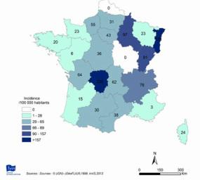 Maladie de Lyme en France