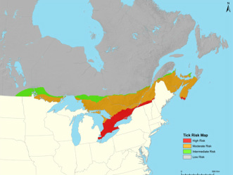 Maladie de Lyme au Canada